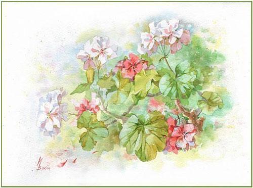 10minutesinna_白俄罗斯艺术家inna水彩花卉插画作品欣赏