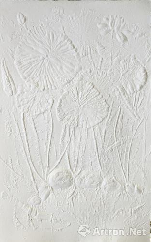 《后来被崇拜的植物》 邱志杰 180×120cm 2013年