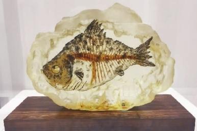 画皮-鱼(综合材料雕塑) 南超