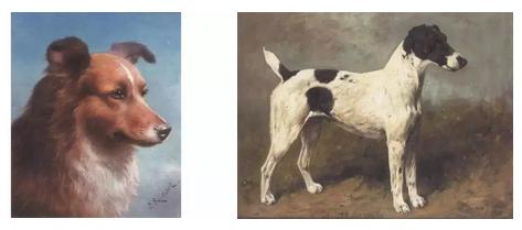 一只可爱的动物将增加一幅画的价值,但是在动物王国也有着