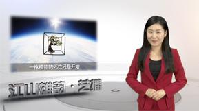 江山雄韵 艺播 第92期
