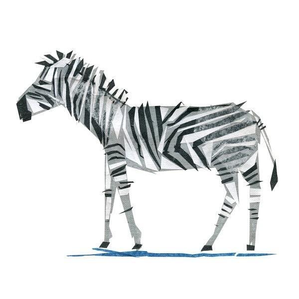 美国艺术家的简约抽象的动物插画