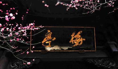 国清寺隋梅是我国现存最古老的梅树之一