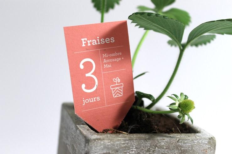 Anticrise内饰花园企业品牌形象设计