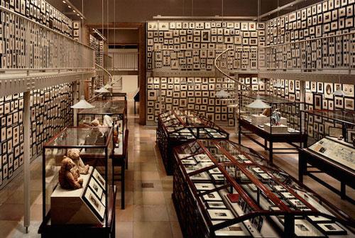 叶德莎・韩德尔斯收集了3000张泰迪熊照片