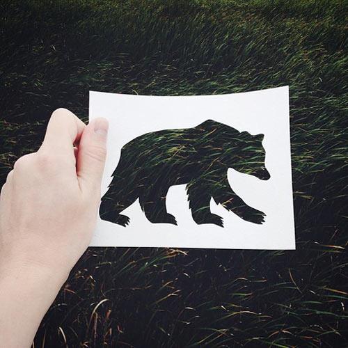 让大自然画出各种漂亮的动物
