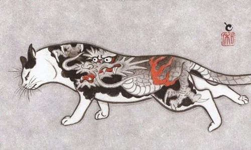 这些猫咪身上的花纹特别炫丽