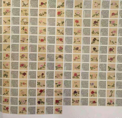 蒋廷锡《百种牡丹谱》