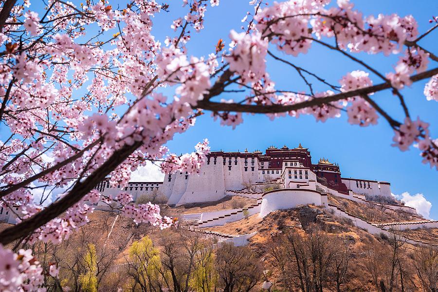 西藏行纪-叶子映像