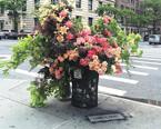 当垃圾桶成为花瓶 会是怎样的景象呢?