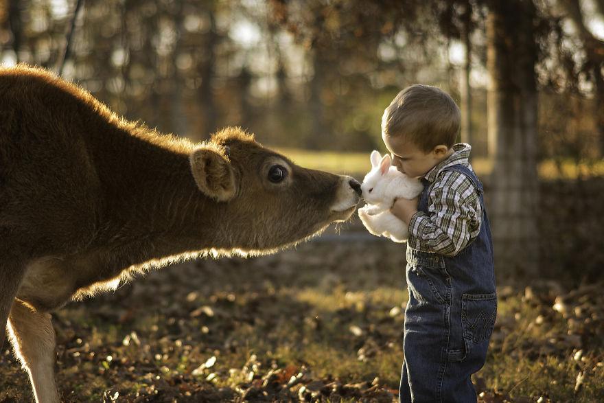 你的孩子还在游乐场玩 别人的孩子是在农场玩