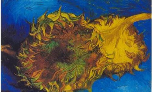 梵高的 向日葵 画作都被收藏在哪