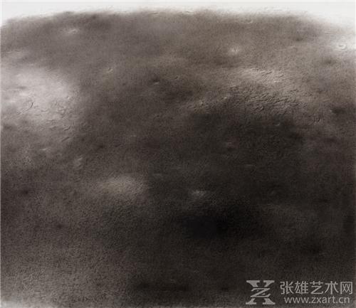 茅小浪 非宣水墨 (14) 130×152cm 2012