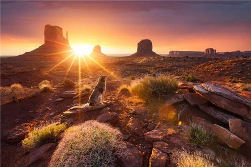 捕捉清晨第一缕阳光,让生活充满希望