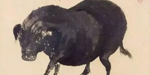 徐悲鸿画猪亦了得:浓淡刻画 趣味十足