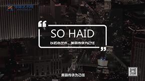 匠心艺术,美丽传承——S0 HAID