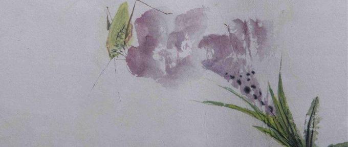 写草虫妙绝的潘君诺,一位几近被湮没的画人