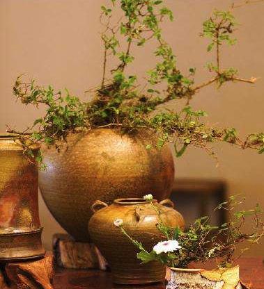 """刘悦笛:用""""生活美学""""来确立艺术流派和学派"""