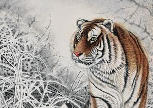 画家笔下的动物温情